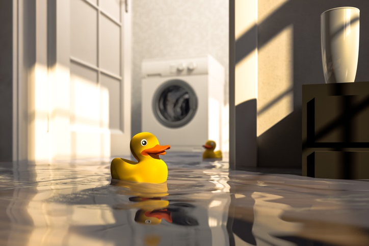 Washing Machine Flooding With Rubber Duckie